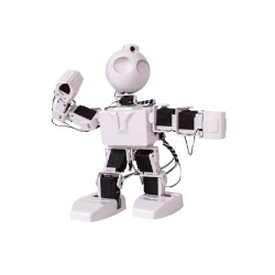 Ez-Robot - JD Humanoid